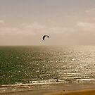 Flyin the Ocean by Ciarra Ornelas