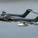 "Sea Vixen ""Foxy Lady"" by SWEEPER"
