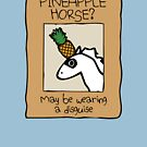 Have You Seen This Pineapple Horse? by jezkemp