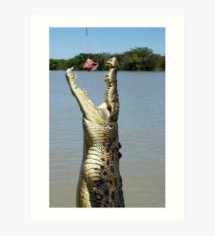 Chomp - salt water croc on Adelaide River, NT Art Print