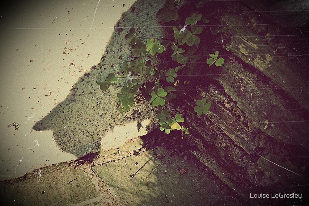 Shadow by Louise LeGresley