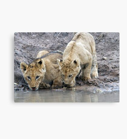 Drinking With A Friend Canvas Print