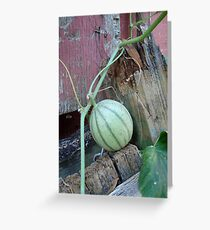 Best Seat in the Garden Greeting Card