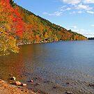 'Fall Color at Jordan Pond' by Scott Bricker