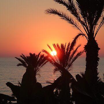 Palm Tree Sunset Mediterranean by dizzyg