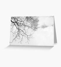Black / White Winter Barren Tree + Sky Greeting Card