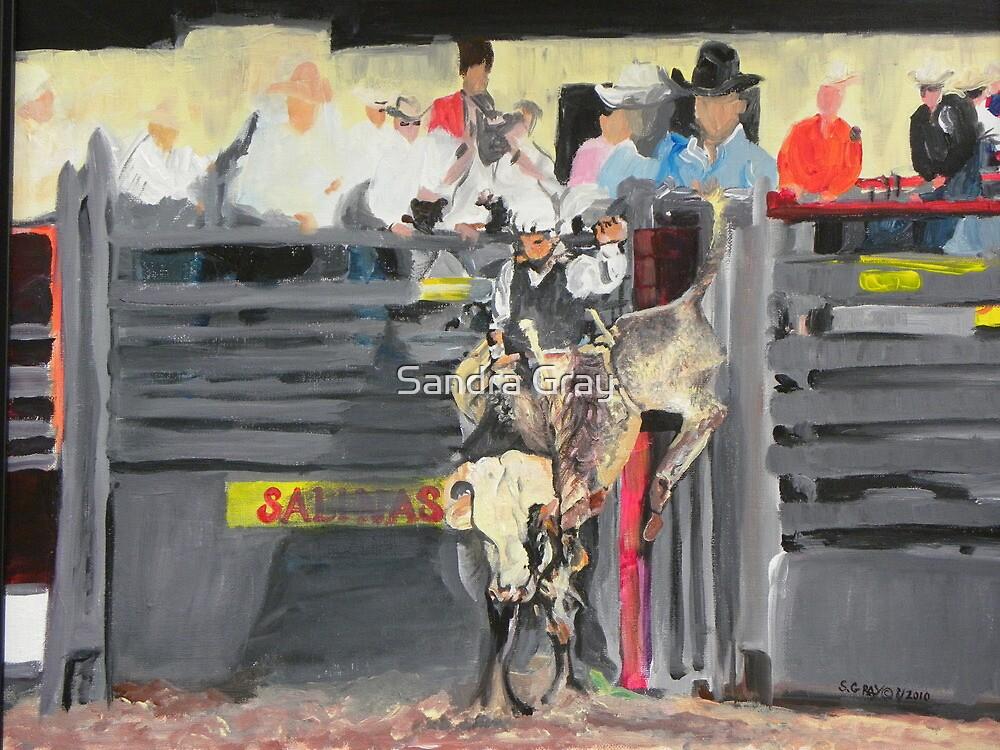 Bull Rider by Sandra Gray