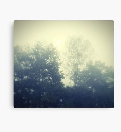 Sunday in the mist Canvas Print