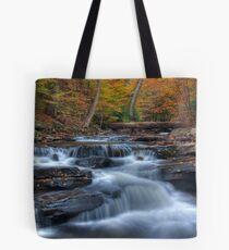 Kitchen Creek Autumn, Ricketts Glen Tote Bag