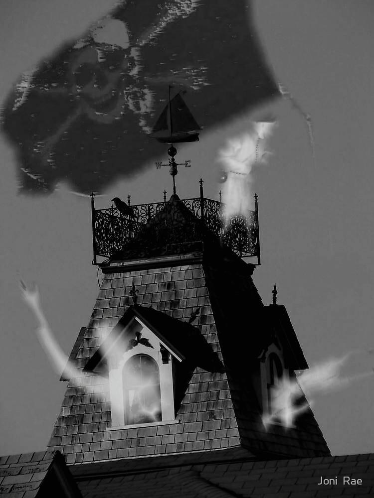 Nightly visitors by Joni  Rae