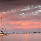 Twilight Glow- Airlie Beach by Tim Wootton