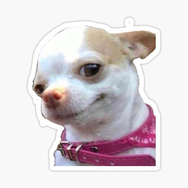 Perro meme Pegatina