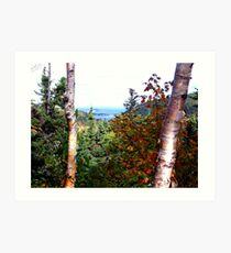 Cape Breton Autumn Art Print