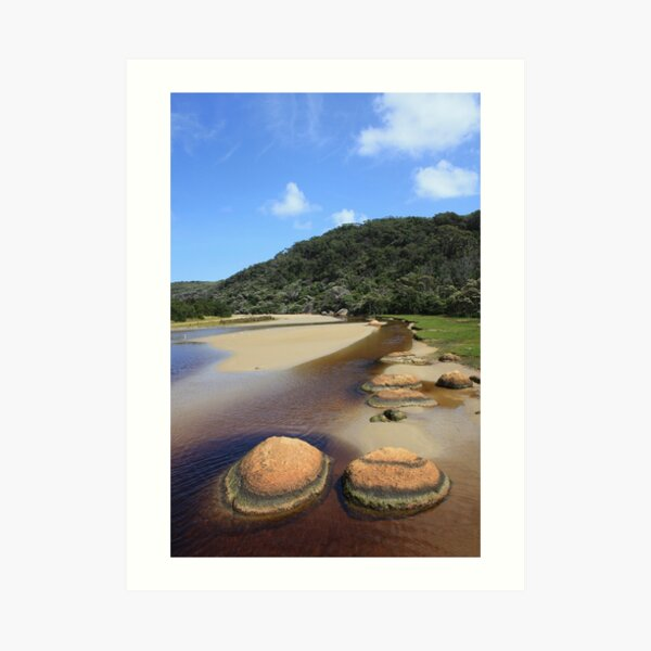 Tidal River rocks... Art Print
