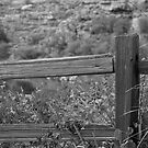 A Wooden Fence by James2001