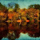 Nature's Mirror ©  by Dawn Becker