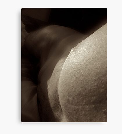 curved composition Canvas Print