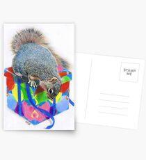 Curiosity Postcards