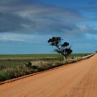 Australian dirt road in the Flinders Ranges by Joanne Emery