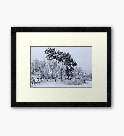 Silken painting - winter Framed Print