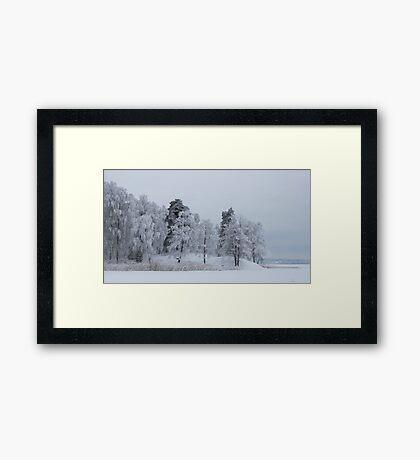Deep cold trees Framed Print