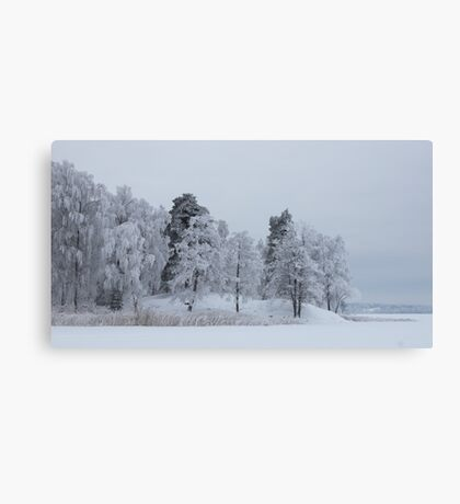 Deep cold trees Canvas Print