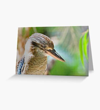 Blue winged kookaburra  Greeting Card