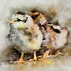 Two chicks just hatched  by WesternExposure