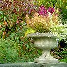 Autumn in the Garden by Monica M. Scanlan