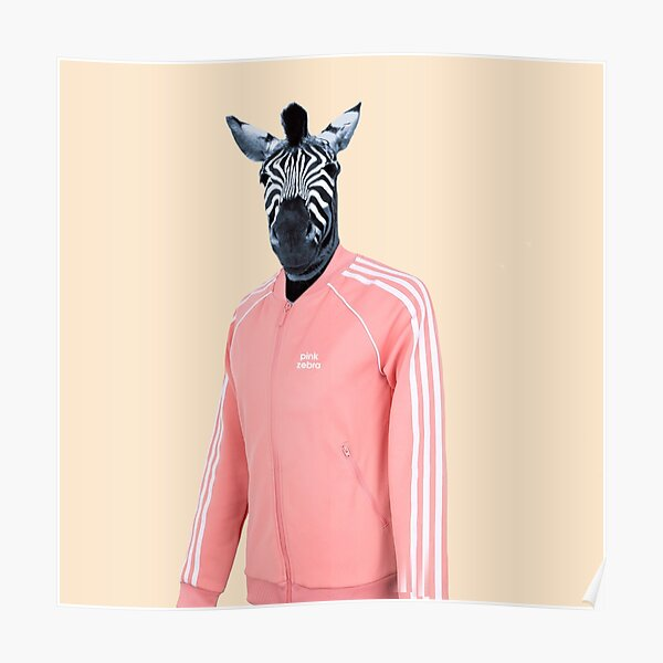 Pink zebra  Poster