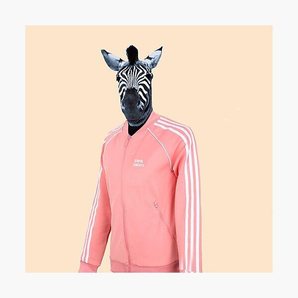 Pink zebra  Photographic Print