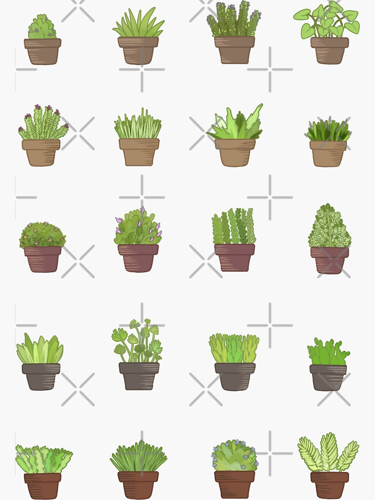 Potted Green Plants by Chorvaqueen