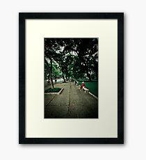 Ho Chi Minh Beauty Framed Print