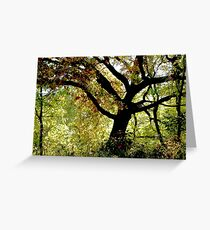 Under The Magic Tree Greeting Card