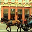Horse and Carriage, Bruges by Louise Fahy