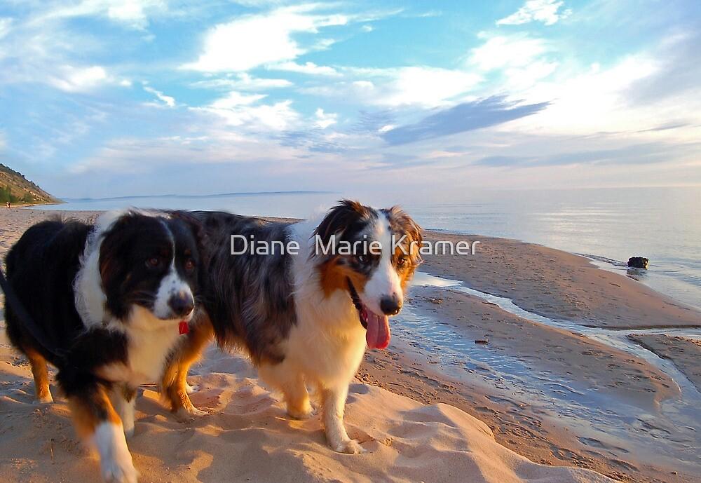 Odin and Cezanne Blue walk Lake Michigan by Diane  Marie Kramer