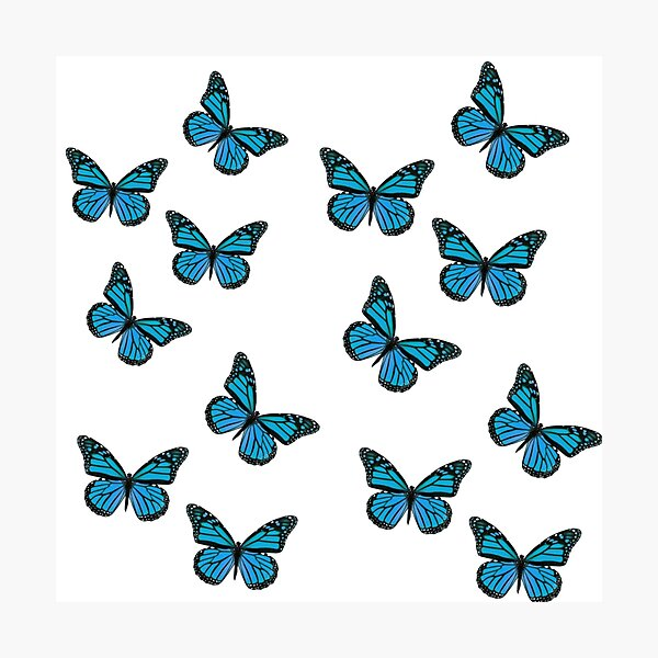 blue butterfly vsco graphic  Photographic Print
