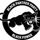 Black Panther Party - Black Power by dru1138