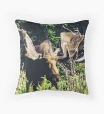 Moose on Cabot Trail 2 Throw Pillow