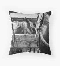 Workhorses Throw Pillow