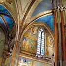 St. Francis Basilica Ceiling by Blake Steele