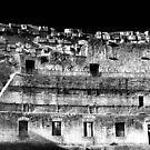 COLOSEUM WALL DETAIL IR by MIGHTY TEMPLE IMAGES