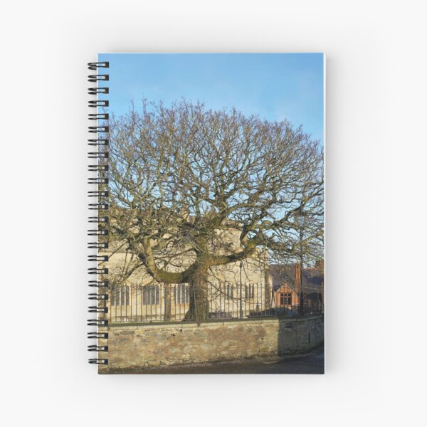 Walls of Derry - tree Spiral Notebook