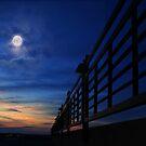 Moonlight over Minnesota by Angela King-Jones