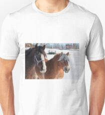 Equine Friends Unisex T-Shirt
