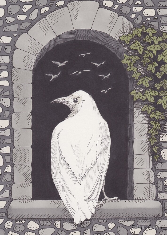 The White Rook by Esther Green