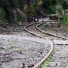 Rail line at Coal Creek by Andrew Clinkaberry