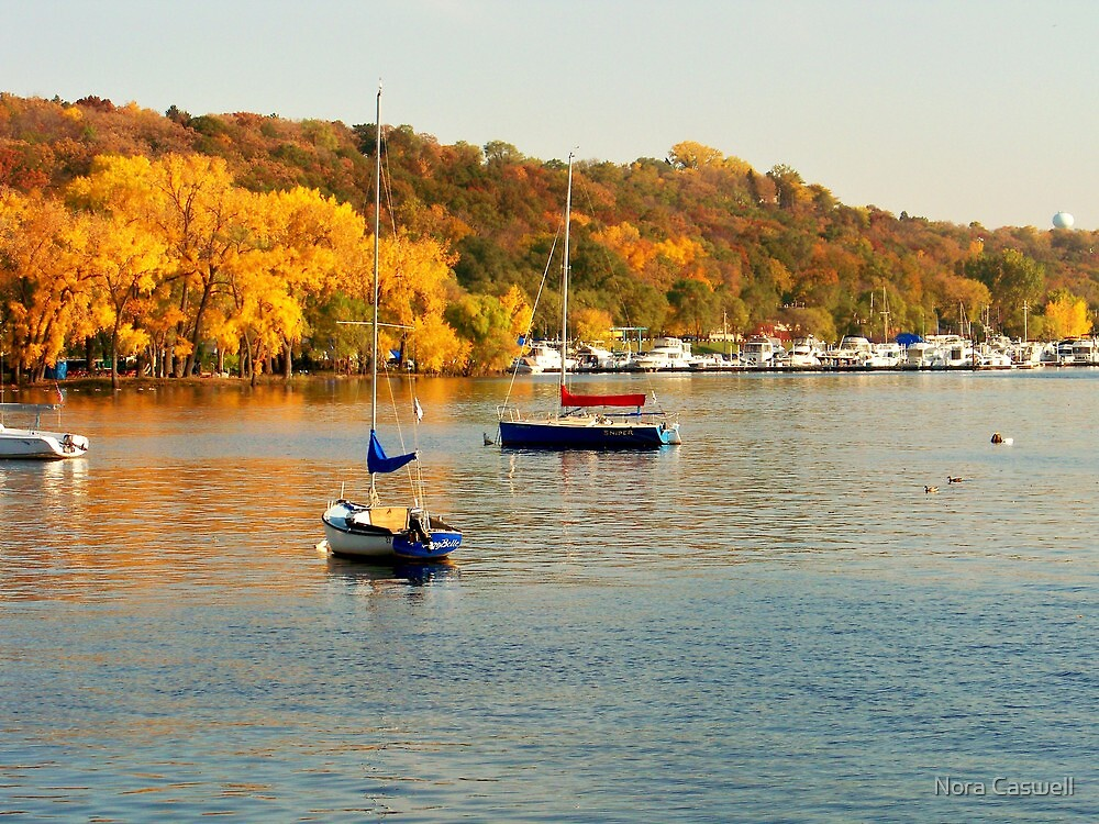 Beautiful Autumn on the Saint Croix River by Nora Caswell