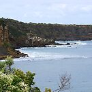 Down along the coast towards Inverloch (2) by Andrew Clinkaberry