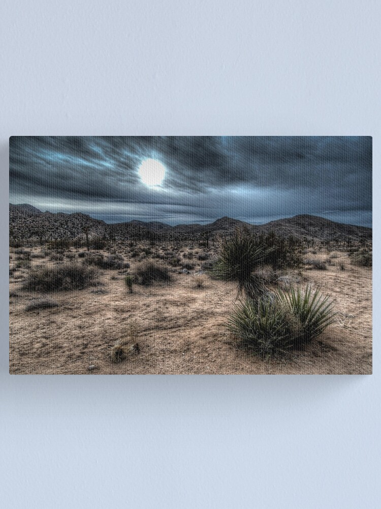 Alternate view of Joshua Tree National Park Sunset Canvas Print
